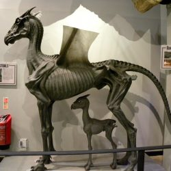 A Thestral model on display in the Harry Potter studio tour at Warner Brothers London. Photo via Creative Commons/Rev Stan/Flickr.