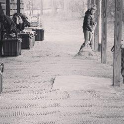 Finding the barn zen. Photo via Matt & Cecily Brown FB page.