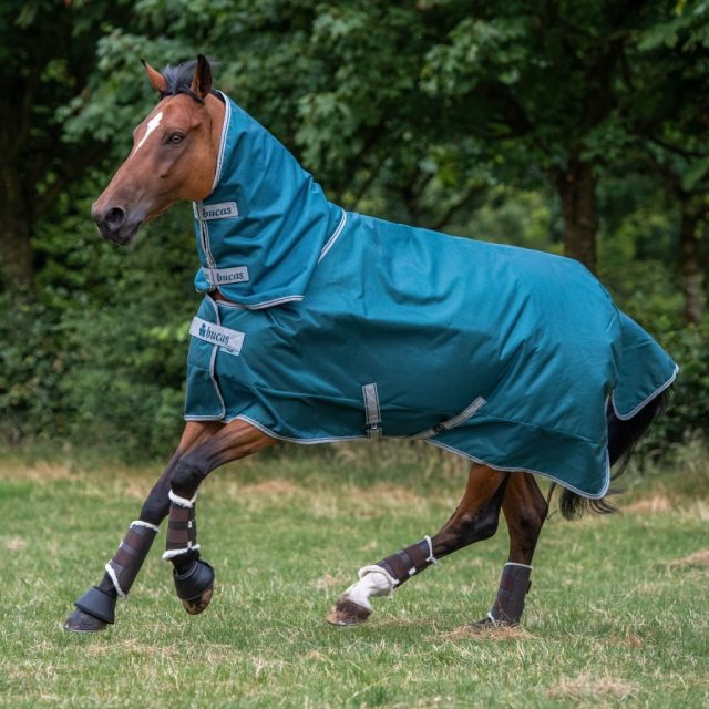 Bucas Atlantic Turnout Rug Combi Neck