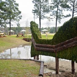 Fence 19AB - The Lumbee River Chincoteague Pegasus. Photo by Jenni Autry.
