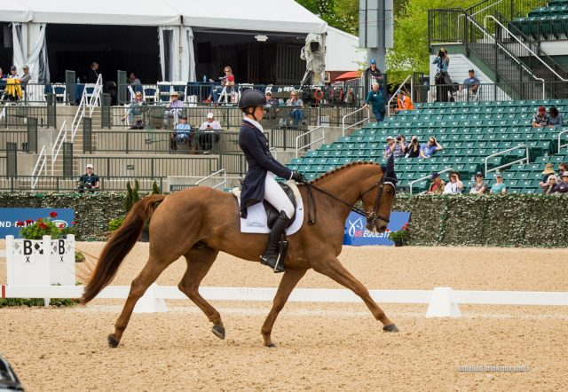 Friday News & Notes from World Equestrian Brands