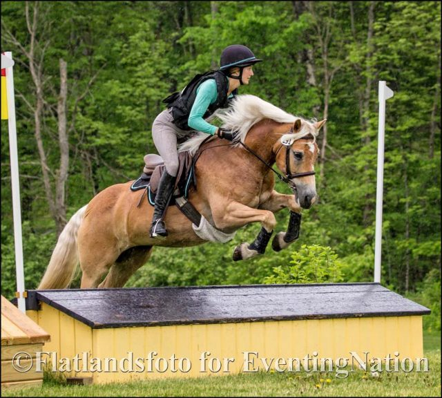 Leslie Wylie   Eventing Nation - Three-Day Eventing News