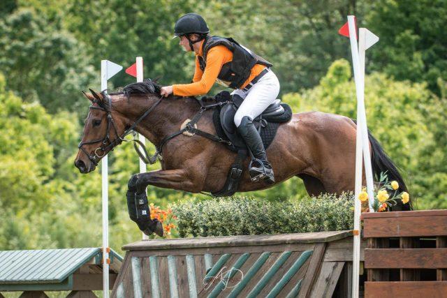 Reckless Abandon. Photo via Sport Horse Nation.