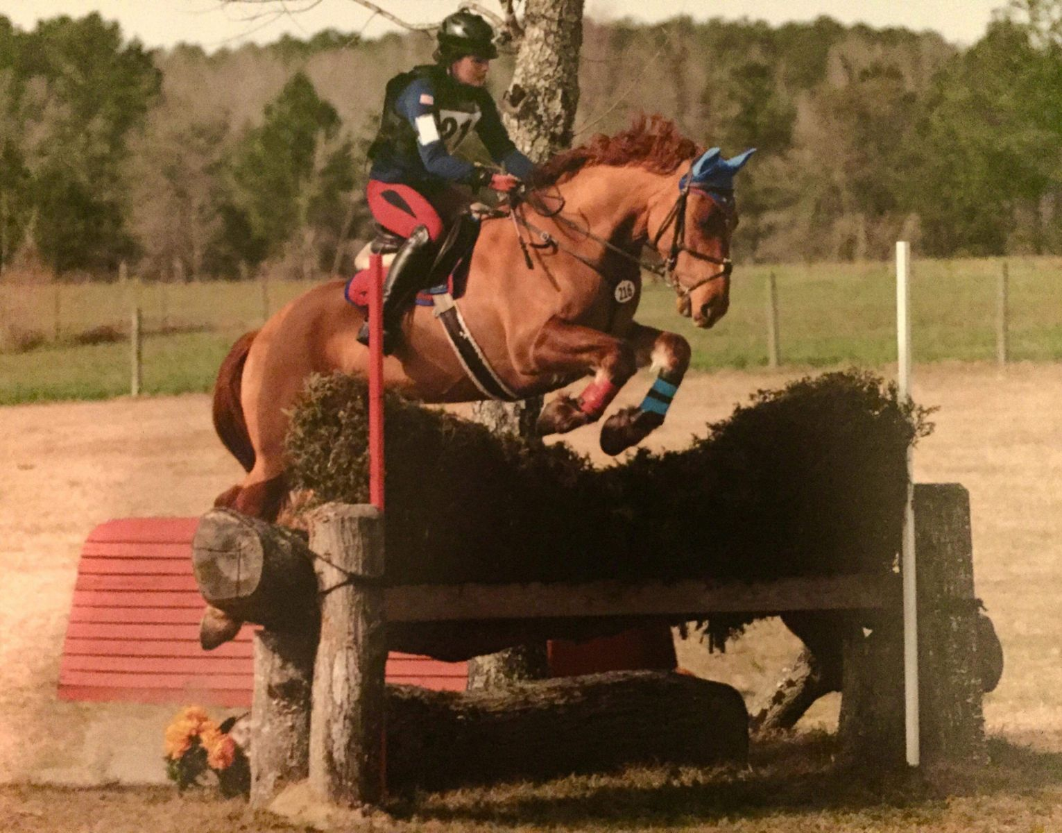 Classic Eventing Nation | Eventing Nation - Three-Day