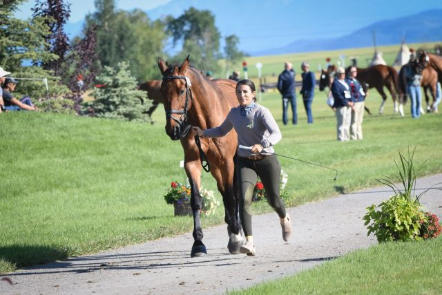 Smooth Sailing in Rebecca Farm/NAYC Final Horse Inspection