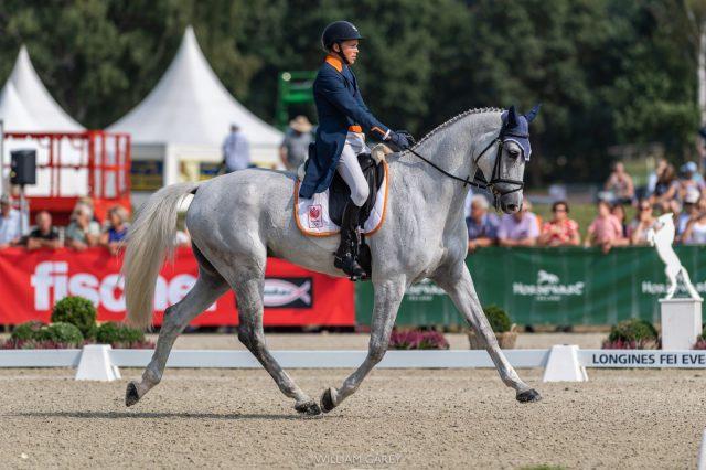 Três locais são apresentados na proposta para o Campeonato Europeu de Equitação em 2021 | Nação de eventos culturais 3