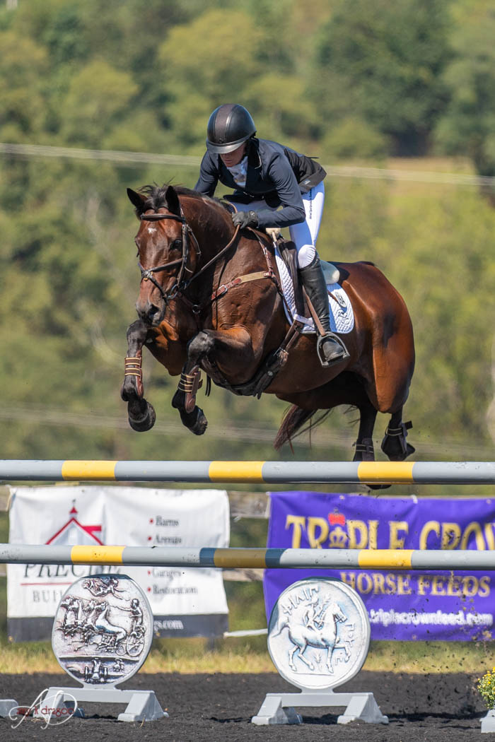 Erin Sylvester & Paddy The Caddy Jump to Plantation Field CCI4*-S Lead