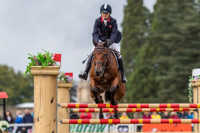 Piggy French Challenges for a Record at Blenheim