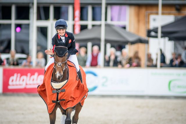 Três locais são apresentados na proposta para o Campeonato Europeu de Equitação em 2021 |  Nação de eventos culturais 1