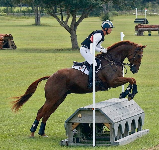 Jon Holling Eventing Nation Three Day Eventing News