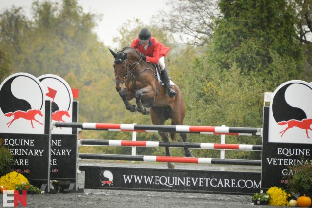Em Números: Galway Downs 4 * -L Show Jumping Day |  Nação de eventos culturais 4