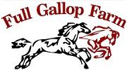 Nação Voluntária: Como Ajudar Full Gallop e Rocking Horse neste fim de semana | Nação de eventos culturais 3