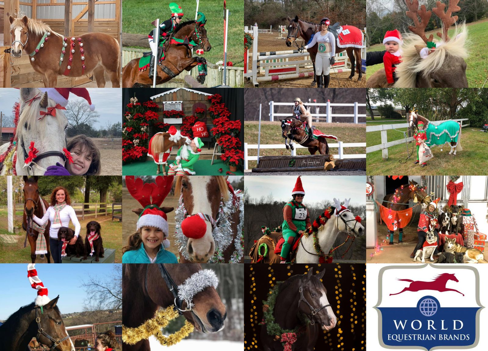 World Equestrian Brands Holiday Horse Costume Contest Top 15 Finalists Eventing Nation Three Day Eventing News Results Videos And Commentary