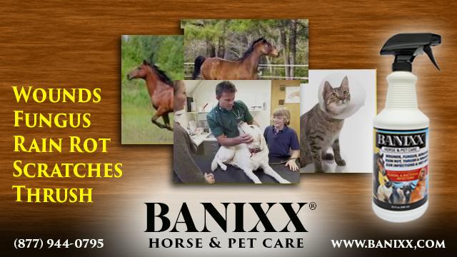 Banixx,Wound Care,Horse,Equine,Safe,Non-toxic