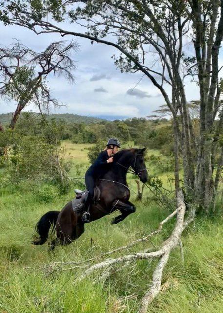 EN's Top 10 Videos de 2020, # 9: Dreamy Horsey Holiday de Charlotte Dujardin | Nação de eventos culturais 1