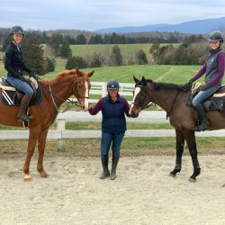 Dappir Ridge OTTBs have been coming along nicely! From left to right: Alex Austin on