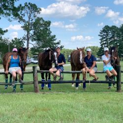 The Dappir Ridge Baby OTTB Contingent at the Carolina Horse Park! From left to right: Kelly Giunta with Robbie Jones, Alex Austin with Hunter's Dream, Kiki Osbourne with Prince Attack and Adriana Nannini with Sevennotrump. Photo courtesy of Ruth Cruz.