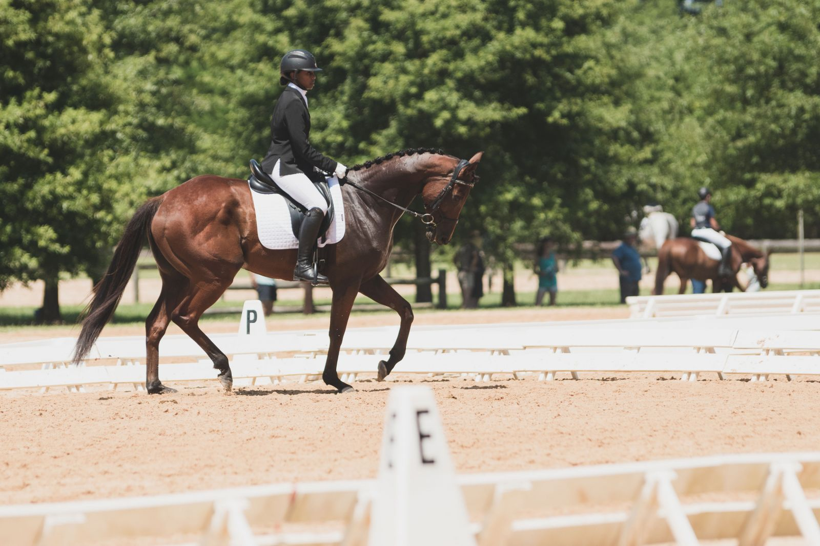 How Bree Brookins Found Her Stride Horse Nation