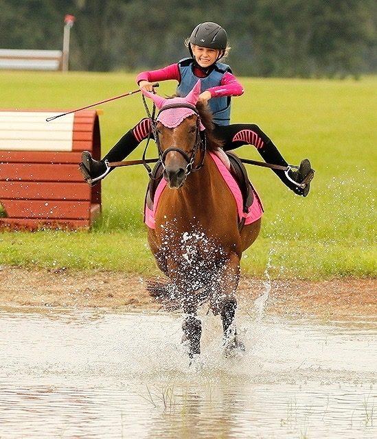 Friday News & Notes from World Equestrian Brands | Nação de eventos culturais 1