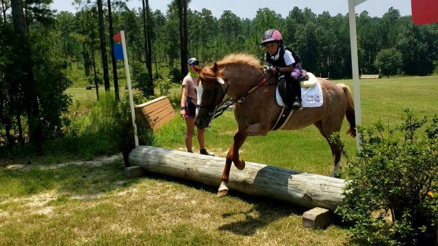 Friday News & Notes from World Equestrian Brands | Nação de eventos culturais 2