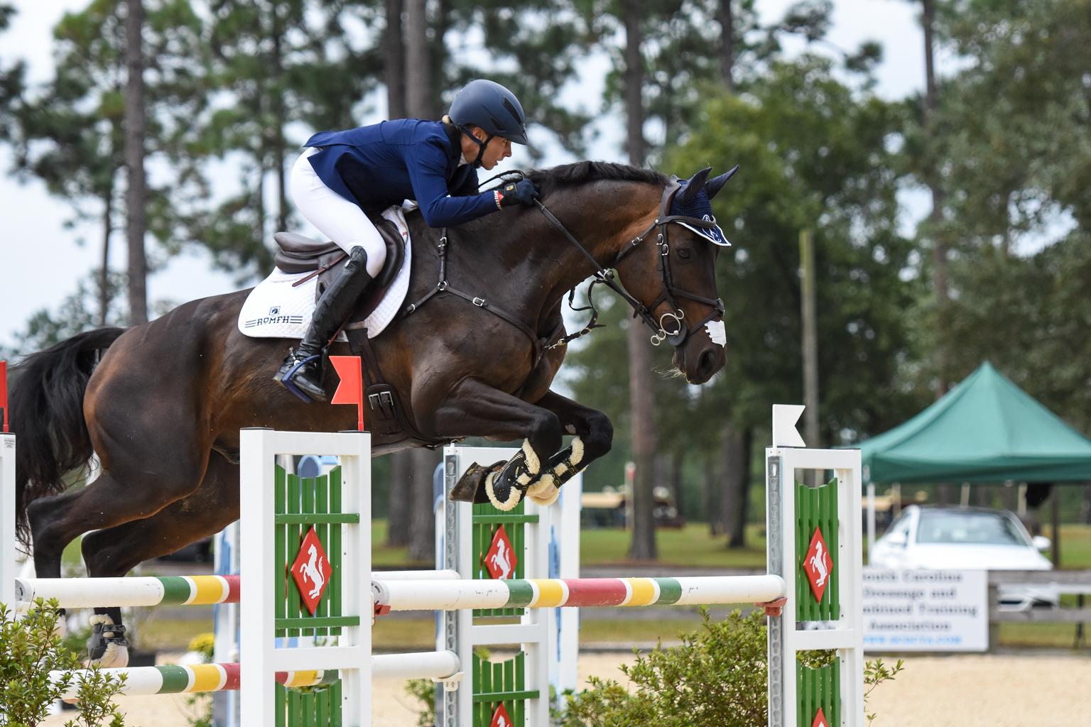 Stable View Oktoberfest: Liz Halliday-Sharp & Fernhill By Night Claim CCI4*-S Show Jumping Lead - Eventing Nation - Three-Day Eventing News, Results, Videos, and Commentary