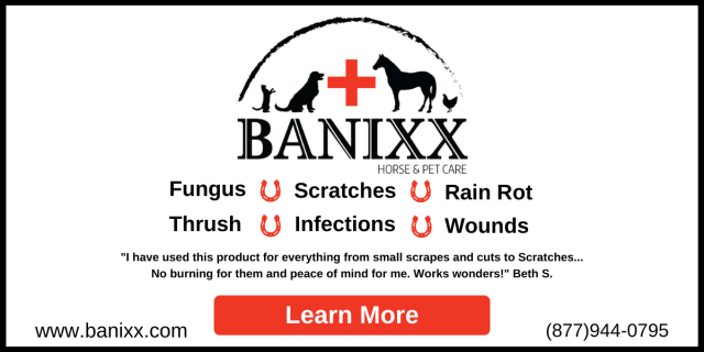 Banixx,Wound Care,Horse,Equine,Safe,Non-toxic,Dog,Cat,Fungus,Fungi,Thrush,Scratches,Infection,Rain Rot,Chicken