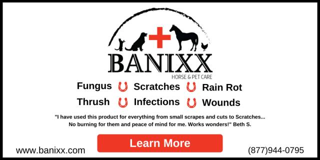 Reduzir, reutilizar, reciclar: um guia para um celeiro 'mais verde', trazido a você por Banixx |  Nação de eventos culturais 4
