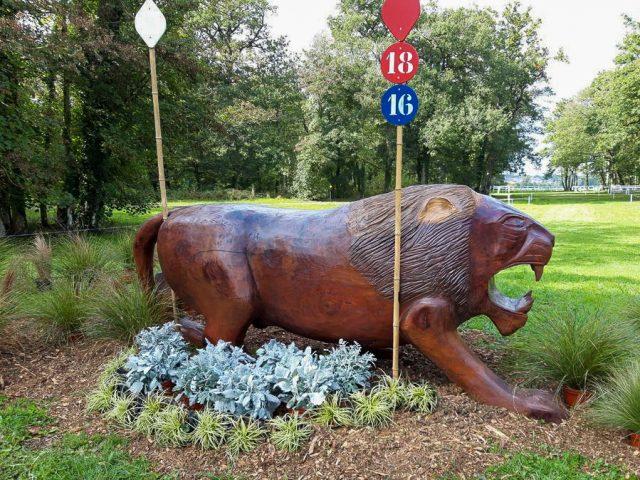 Como construir um coração de leão: uma prévia do curso Le Lion d'Angers |  Nação de eventos culturais 1