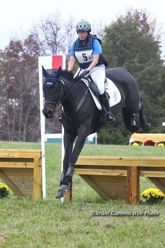 Talento local: Por meio de parceria, mais crescimento é possível para a criação de cavalos esportivos americanos | Nação de eventos culturais 3