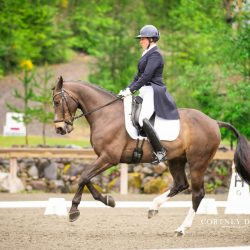 Auburn Excell Brady and BSP Tuxedo. Photo courtesy of Cortney Drake Photography.