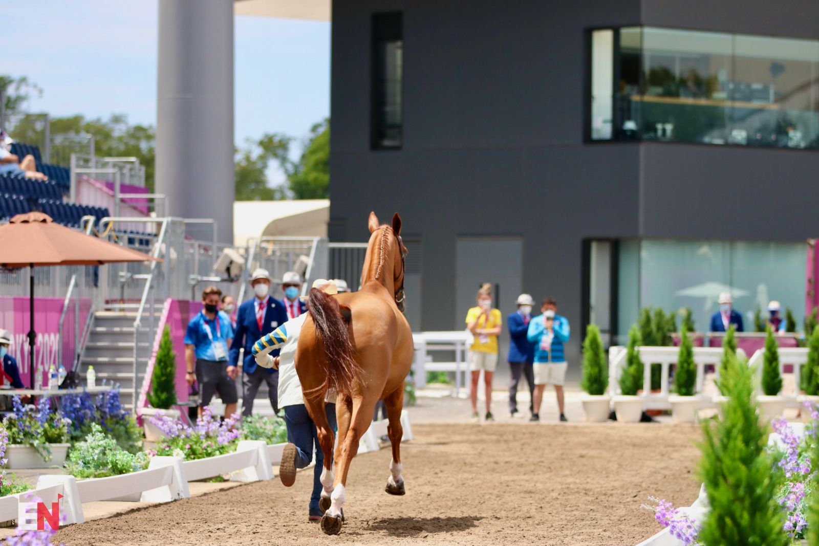 Form, Function, and Fun Facts: Your Guide to the Tokyo Eventing Competitors