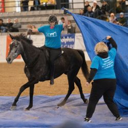 Thunderous Affair and Lindsey Partridge on their way to winning the Freestyle. Photo by CanterClix.