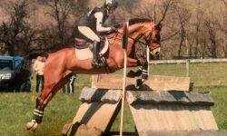 Fernhil-Choc-XC-Corner-Cindy-Lawler-Photo.jpg