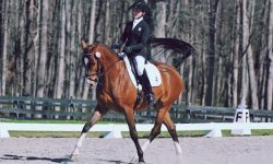 Fernhil-Choc-Trot-Cindy-Lawler-Photo.jpg