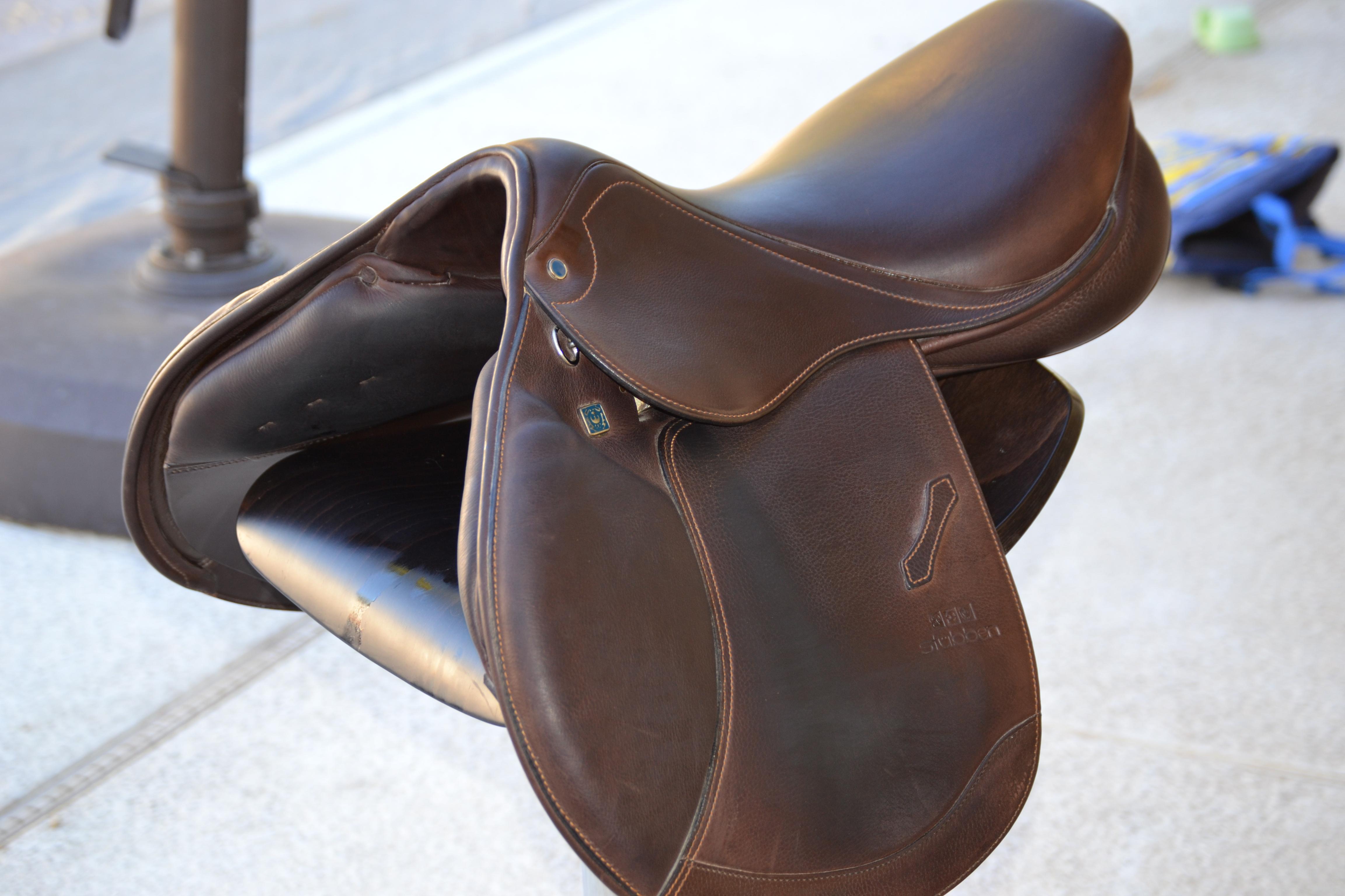 saddle 004.JPG