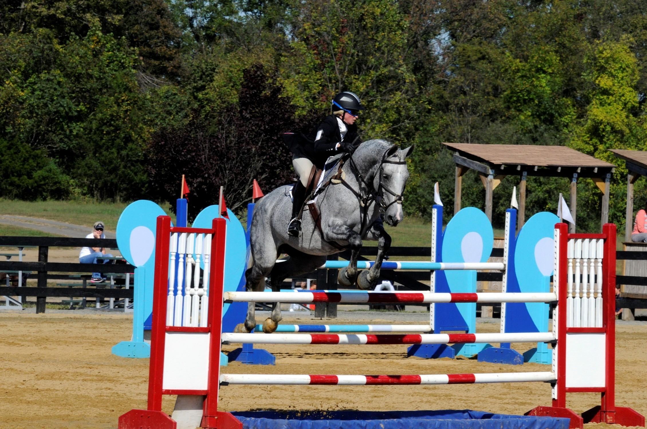 Rain Dancer Show Jumping Picture 1.jpg