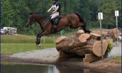 Campi-Middleburg-Water1-700.jpg