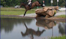 Campi-Middleburg-Water2-700.jpg