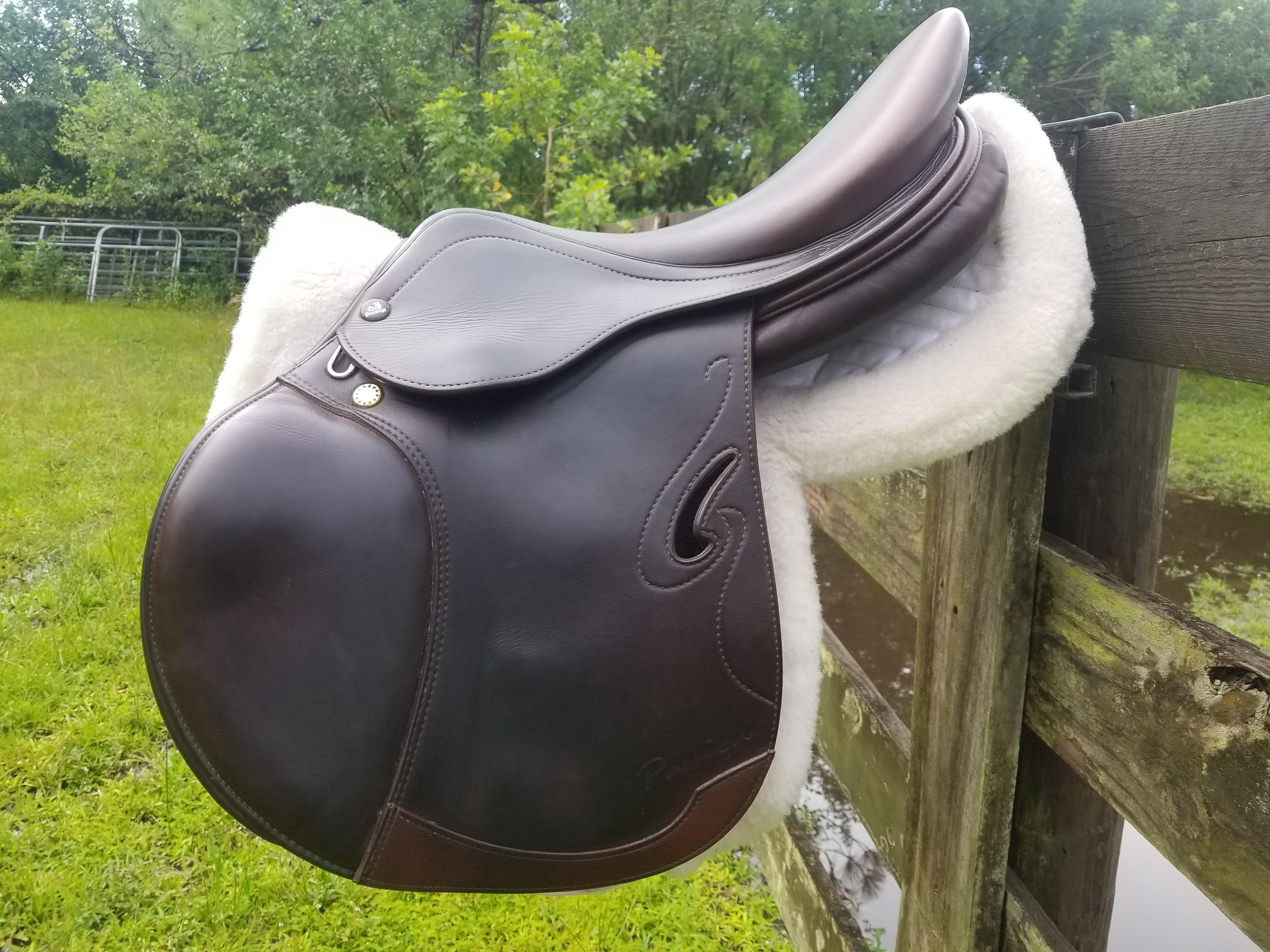 Sport Horse Nation Spotlight: 5 Saddles for A Super Ride
