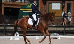 Millyes-Mojave-AEC-Dressage-SportFot-Photo.jpg
