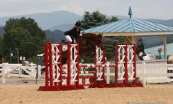 High Quality, Billy & Emily, Red & White oxer.JPG