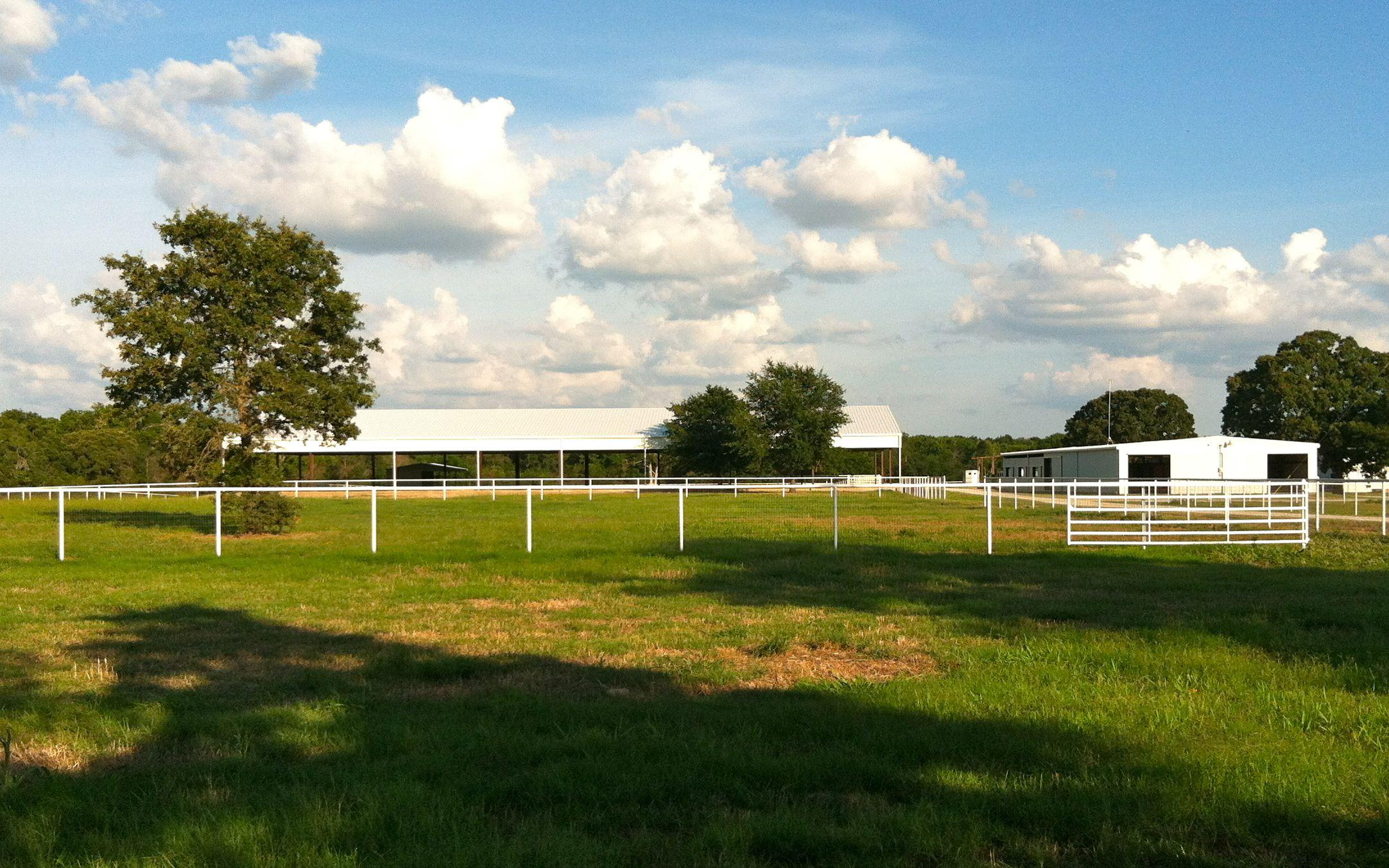 2012.06.19 View of Arena across Paddock.jpg