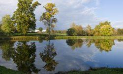 LakeBarn_Pan_111024_022.jpg